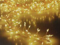 Vorschau: LED-Büschellichterkette Silberdraht, 100 LEDs, warmweiß, Batterbetrieb