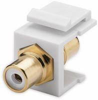 Vorschau: Einbau-Modul GOOBAY 79676, 2x Cinch-Buchse, weiß, vergoldet