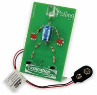 Vorschau: Bausatz Pollino
