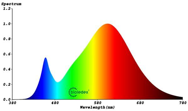 BIOLEDEX LED-Modul, 40x25 mm, 12 V-, 3,0 W, 270 Lm, 3000 k, warmweiss, A+ - Produktbild 2