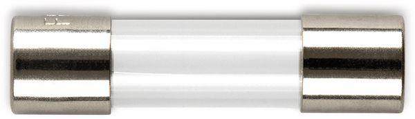 ESKA 522511, Feinsicherung 5x20mm, träge, T 250 mA, 10 Stück