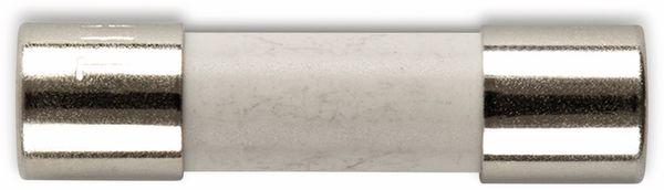 ESKA 522717, Feinsicherung 5x20mm, träge, T 1 A, 10 Stück