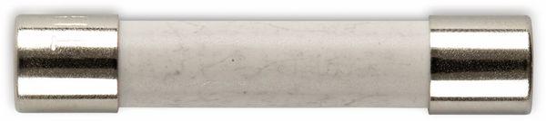 ESKA 632727, Feinsicherung 6,3x32mm, träge, T 10 A /500V, 10 Stück
