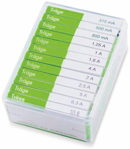 Feinsicherung-Sortiment, ESKA, 632830, (Ø x L) 6,3 mm x 32 mm Träge -T- Inhalt 120 St.