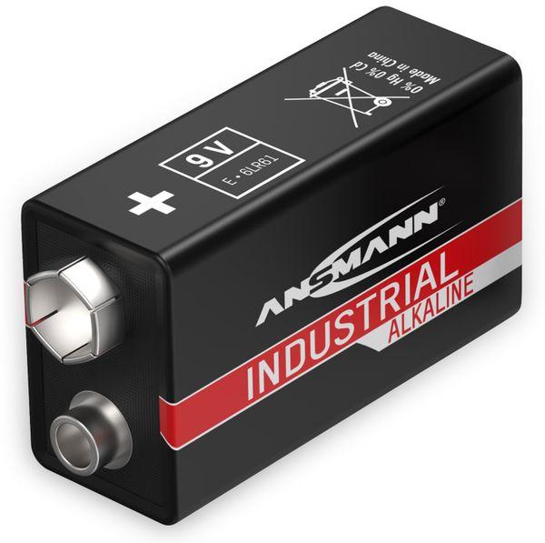 9V-Blockbatterie, ANSMANN, INDUSTRIAL, Alkaline, 1 Stück