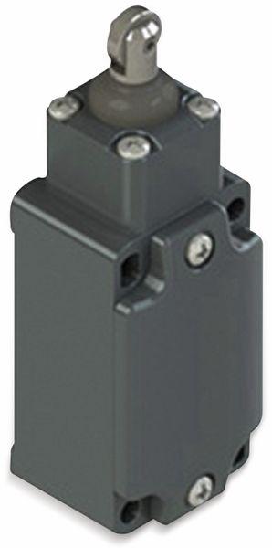 PIZZATO ELETTRICA, FD515-M2, Positionsschalter 250 V/AC, 6 A, Rollenstößel, tastend, IP67