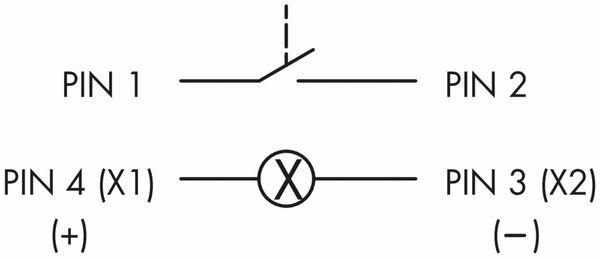 Schlegel, Drucktaster mit Ringbeleuchtung und M12-Anschluss 4-polig; STLRWI_C005 - Produktbild 2