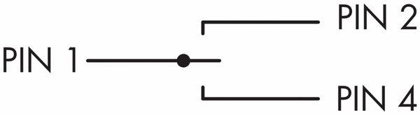 Schlegel, Schlüsseltaster rastend mit M12-Anschluss 4-polig; SVASSA12II_C009 - Produktbild 2