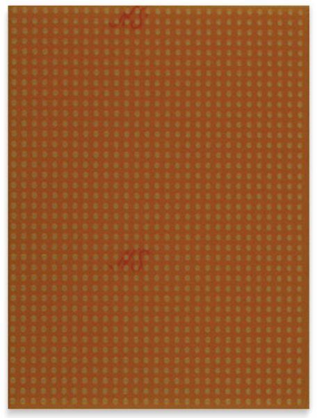 Platine, 527447, FR2, 100x75 mm, ohne Cu
