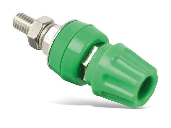 Polklemme, M6, 50 A, 4 mm, grün - Produktbild 2
