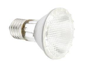 Halogenlampe PAR20