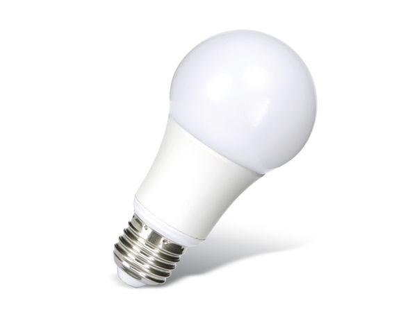 LED-Lampe DAYLITE G-E27-886-W, 9,3 W, 886 lm