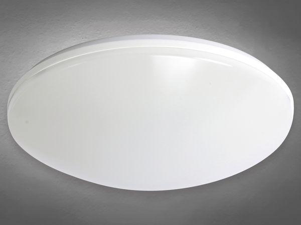 LED Wand- und Deckenleuchte DAYLITE WDL-245W/N, EEK: A+, 14 W, 1290 lm - Produktbild 1