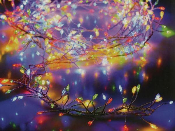 LED-Büschellichterkette Silberdraht, bunt, 240 LEDs, 230V~, IP44, 7,4m