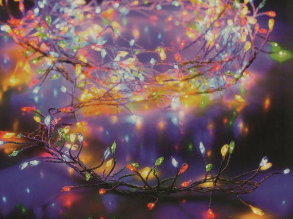 LED-Büschellichterkette Silberdraht, 920 LEDs, bunt, 230V~, IP44, 14,2m - Produktbild 1
