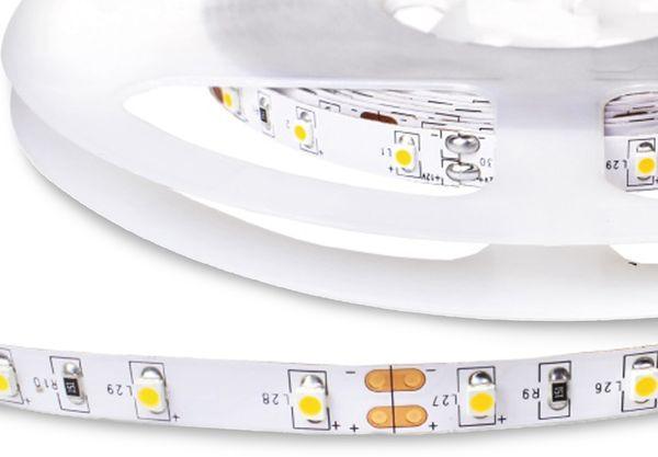 LED-Strip BIOLEDEX LFL-50R3-015, EEK: A+, 300 LEDs, 5 m, 90RA, 5000 K