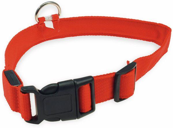 Hunde-Halsband CHILITEC, Größe M, rot, mit LED-Licht