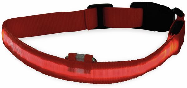 Hunde-Halsband CHILITEC, Größe M, rot, mit LED-Licht - Produktbild 2