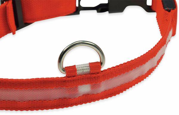 Hunde-Halsband CHILITEC, Größe M, rot, mit LED-Licht - Produktbild 5