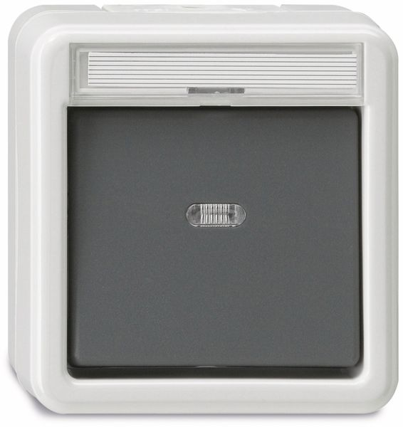 Feuchtraum-Kontroll-Wechselschalter GIRA 011630