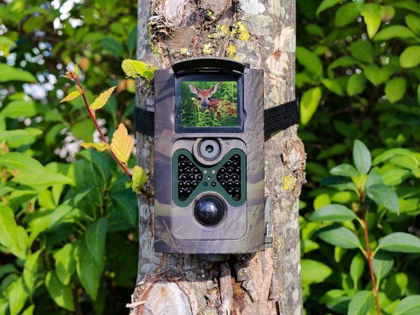 Wildkamera PREMIUMBLUE WC-1601, 5MP, FullHD - Produktbild 10