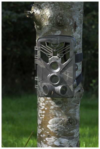 Wildkamera DENVER WCT-8020WDE. 8MP, WLAN, IP65 - Produktbild 6