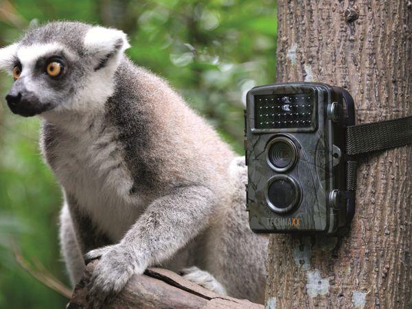 Wildkamera TECHNAXX TX-69 - Produktbild 10