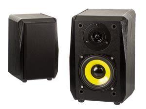 Regal-Lautsprecher DYNAVOX TG-1000B