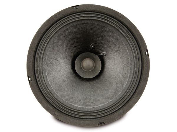 PA-Breitband-Lautsprecher ROCKWOOD DY811U - Produktbild 2