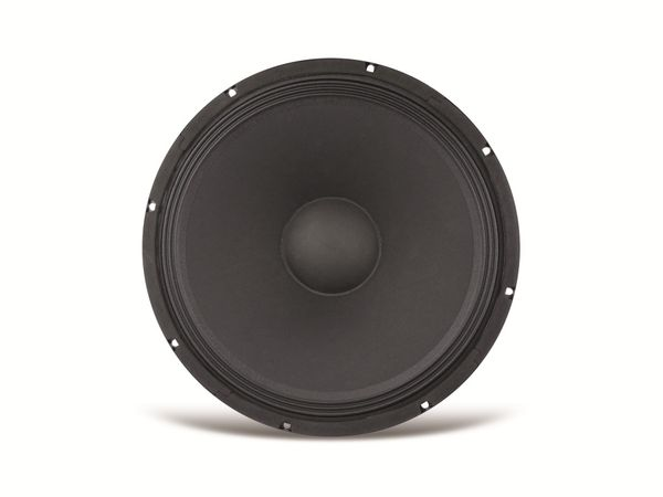 Tieftöner KENFORD PA 250 mm L250025-8B, 8 Ω - Produktbild 1