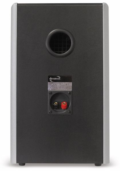 Lautsprecherbox DYNAVOX TG-1000B-E silber - Produktbild 3