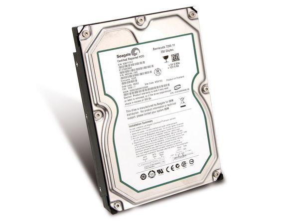 SATA-Festplatte SEAGATE ST3750630AS, 750 GB