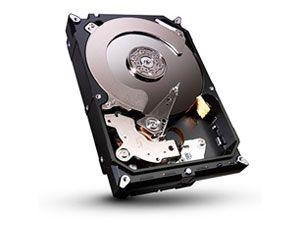 SATA-3 Festplatte SEAGATE ST31000524AS