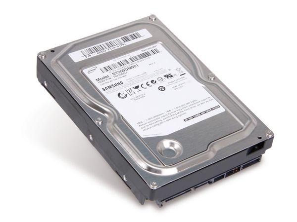 SATA-Festplatte SEAGATE ST250DM001 - Produktbild 1
