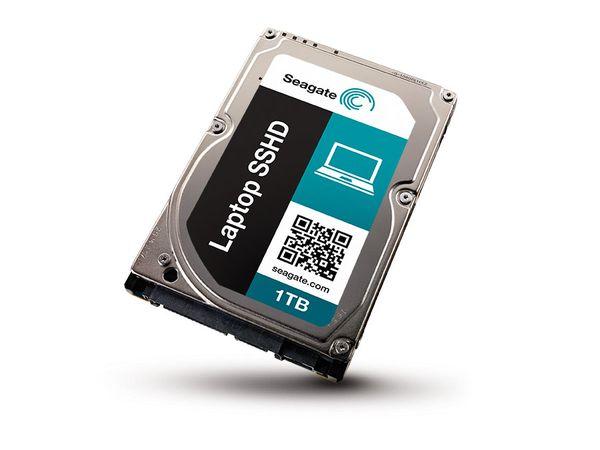 SATA II Festplatte SEAGATE ST1000VM002 - Produktbild 1