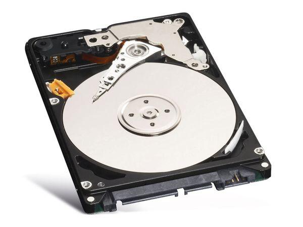 SATA II Festplatte WD Blue WD3200BPVT