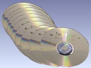 "CD-Rohlinge CD-R 74 ""Platinum"""