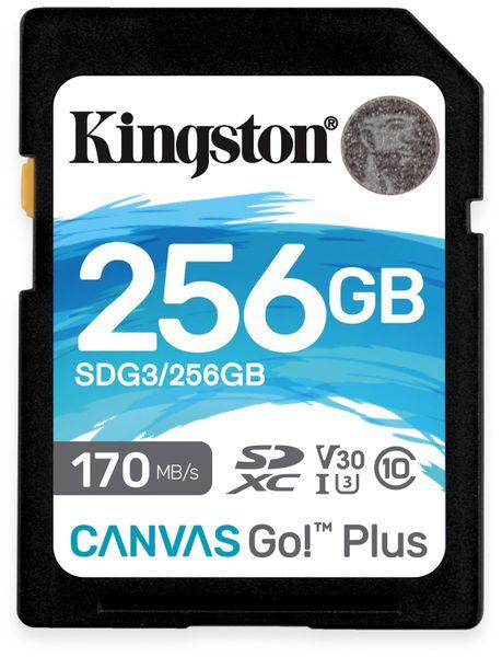 SD-Card KINGSTON Canvas GO!, 256 GB