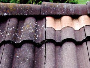 Dach-Kupferband, 5 m - Produktbild 2