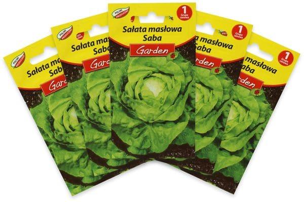"""Samen, Butterkopfsalat """"Saba"""", 5x 0,5g"""